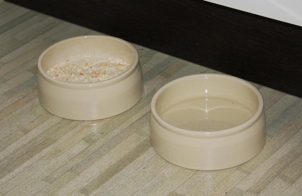 Keramiknaäpfe für Hunde