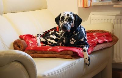 Entspannungstraining auf dem Sofa
