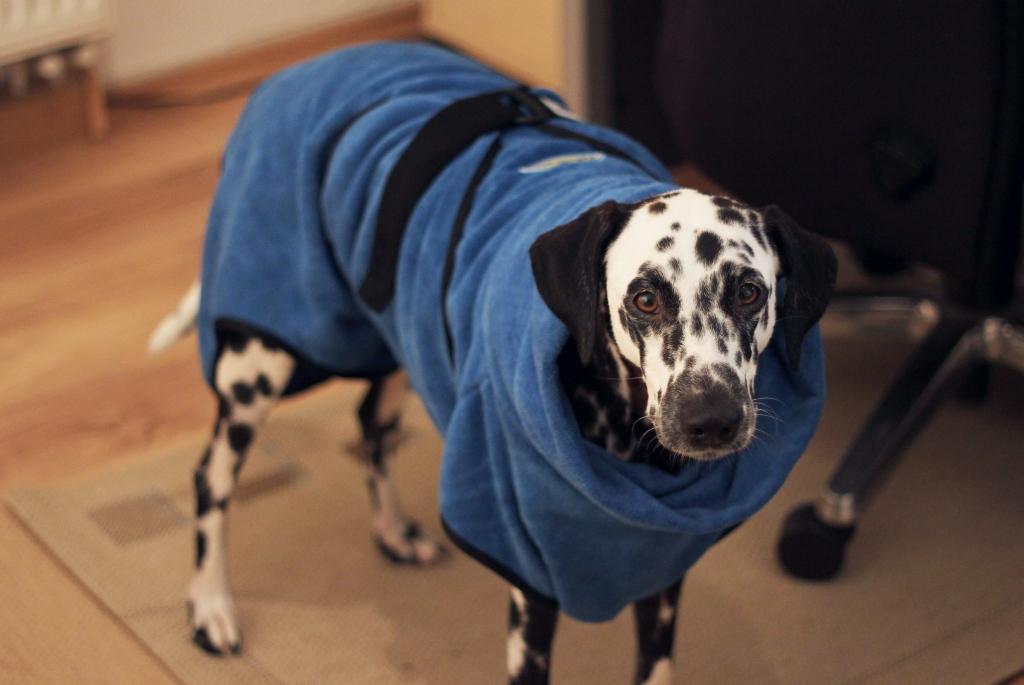 Hundebademantel FurDry von Furminator