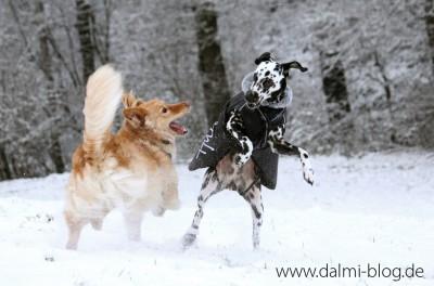 Angie und Jack im Schnee