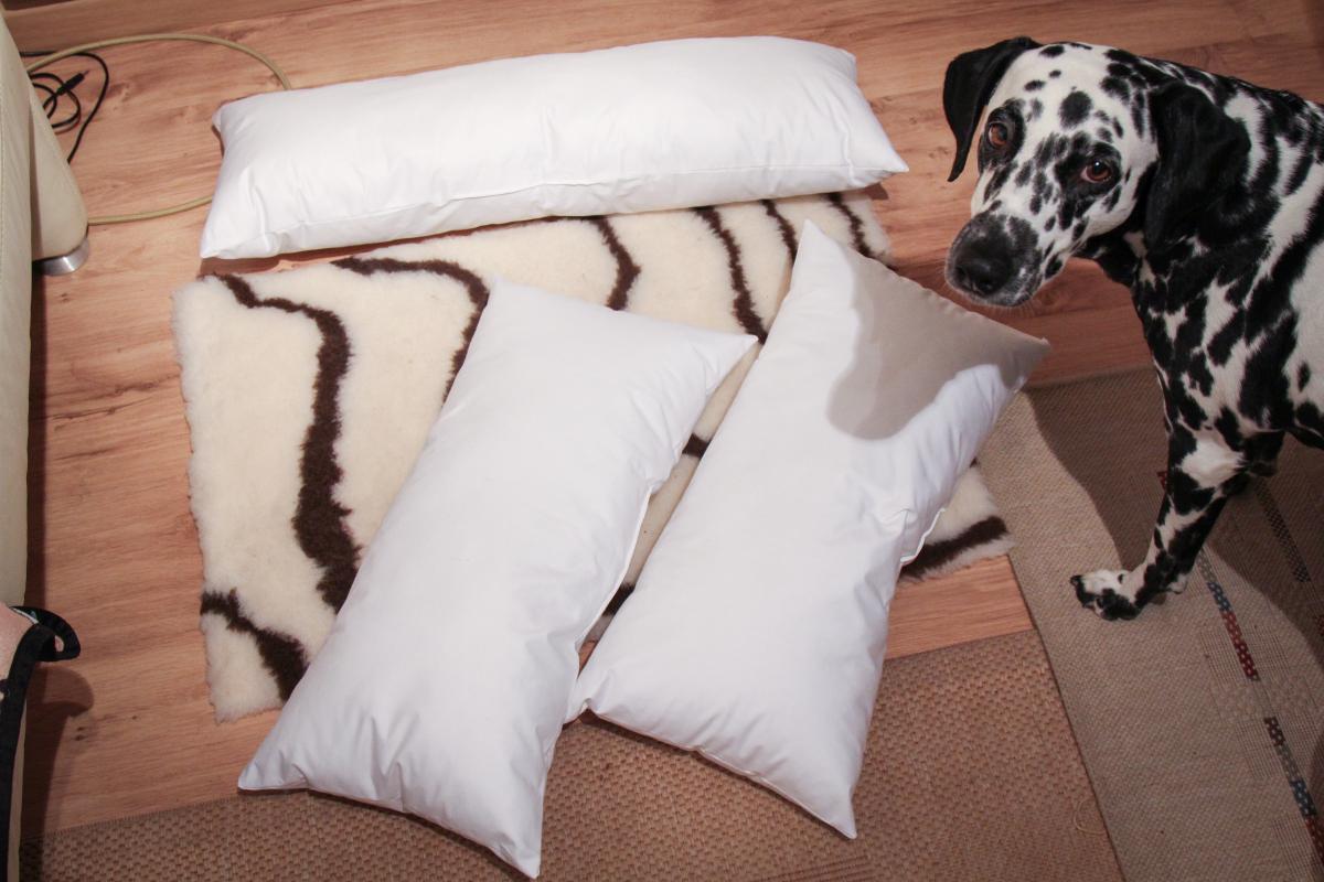 Lieblings Allergiker-Hundebett selber machen: Kochfest & hygienisch - Dalmi-Blog &XY_86